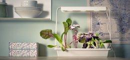 Crea tu pequeña granja con Ikea