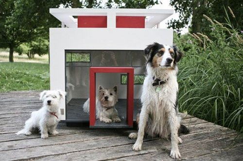 Muebles para nuestras mascotas